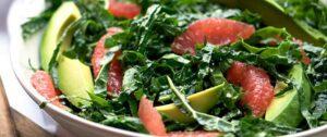 Metabolic Cooking Pdf | Metabolism Cooking For Free Download